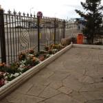 38)Клумба цветочная г.Караганда