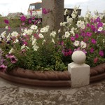 30)Цветочная клумба г.Караганда