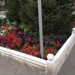 31)Цветочная клумба г.Караганда